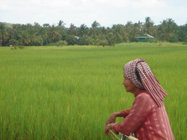 Groen in Cambodja