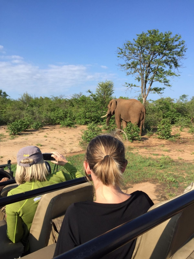 Afrika-specialist Esther op safari