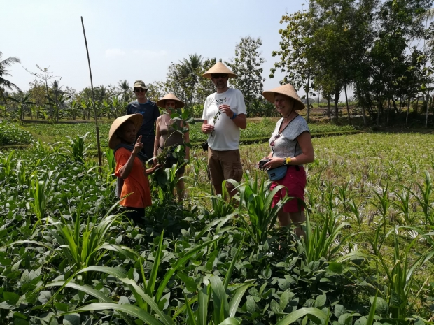 plantage java