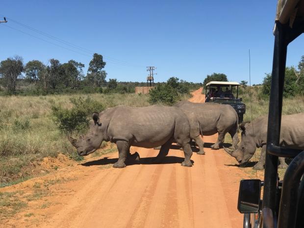 zuid-afrika-zelf-rijden