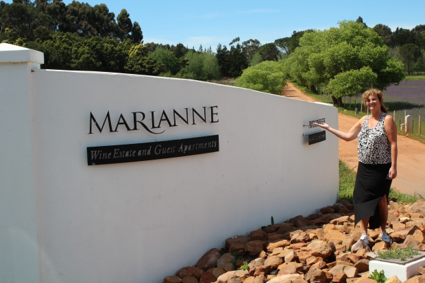 Marianne wine-estate