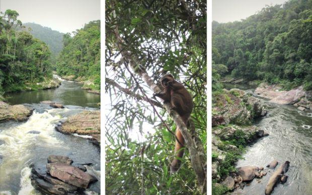 Ranomafana Madagaskar
