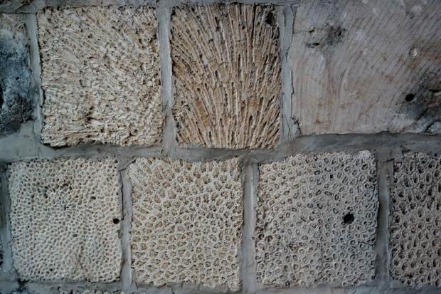 muur uit koraalsteen