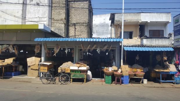 winkeltjes met gedroogde vis Jaffna