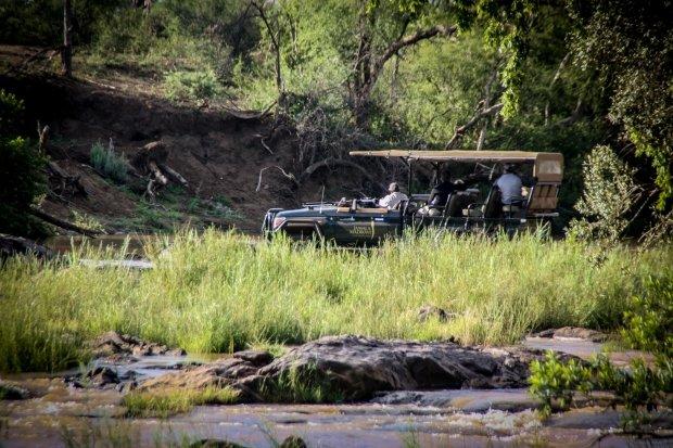 gesloten safariwagen