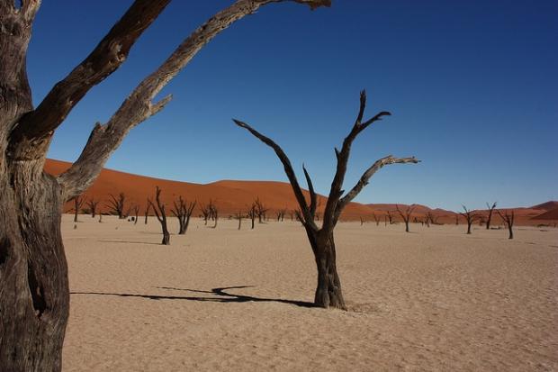 Namibië foto van Martijn