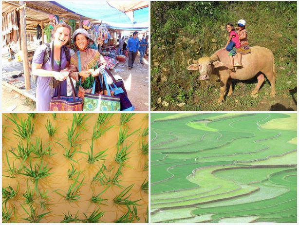 Flickr fotoalbum Vietnam