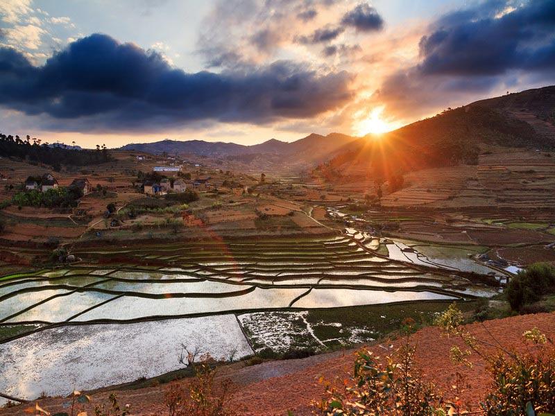 Zonsondergang rijstvelden Madagaskar