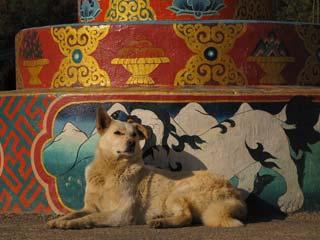 Hond Simtokha Dzong