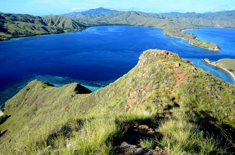 Komodo - Indonesië - Komodo nationaal park