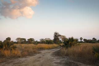 Gorongosa National Park - Gorongosa National Park - foto: Archief
