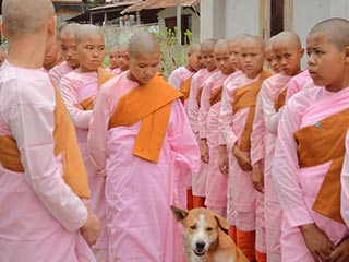 Hsipaw - novices in Hsipaw - foto: Floor Ebbers