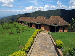 Nyungwe National Park - Accommodatie in het Nyungwe National Park - foto: Lokale agent