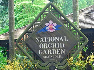 Singapore - National Orchid Garden